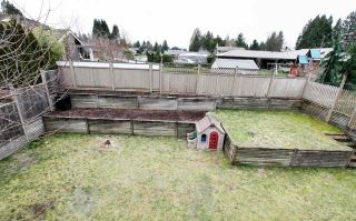 Photo 15: 11640 HARRIS Road in Pitt Meadows: South Meadows House for sale : MLS®# R2530003