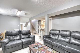 Photo 49: 9832 187 Street in Edmonton: Zone 20 House for sale : MLS®# E4253744