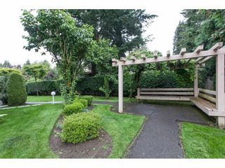"""Photo 19: 103 33731 MARSHALL Road in Abbotsford: Central Abbotsford Condo for sale in """"Stephanie Place"""" : MLS®# R2129538"""