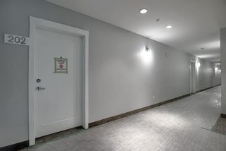 Photo 38: 202 35 Walgrove Walk in Calgary: Walden Apartment for sale : MLS®# A1076362