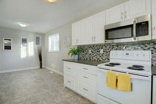 Photo 10: 132 Summerfield Close SW: Airdrie Detached for sale : MLS®# A1049034