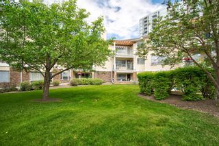 Photo 28: 312 2144 Paliswood Road SW in Calgary: Palliser Apartment for sale : MLS®# A1057089