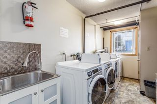 Photo 15: 104 17 13 Street NW in Calgary: Hillhurst Apartment for sale : MLS®# A1058350