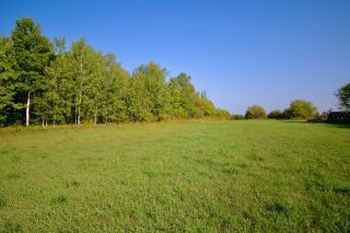 Photo 14: 1857B Highway 602 HWY in Fort Frances: Vacant Land for sale : MLS®# TB212603