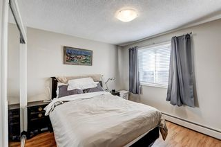 Photo 20: 403 507 57 Avenue SW in Calgary: Windsor Park Apartment for sale : MLS®# A1146991