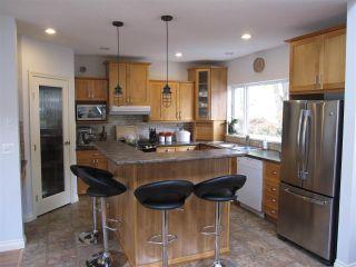 Photo 12: 11981 248 Street in Maple Ridge: Cottonwood MR House for sale : MLS®# R2165177