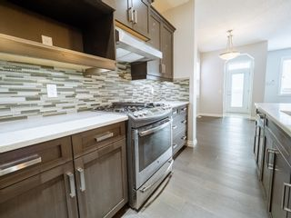 Photo 13: 5215 ADMIRAL WALTER HOSE Street in Edmonton: Zone 27 House for sale : MLS®# E4260055