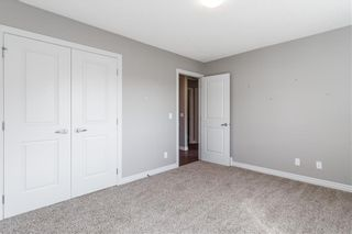 Photo 28: 166 Cranford Green SE in Calgary: Cranston Detached for sale : MLS®# A1062249