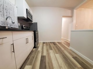 Photo 12: 511 Maryland Street in Winnipeg: West Broadway Residential for sale (5A)  : MLS®# 202111938