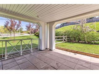 """Photo 2: 113 16398 64 Avenue in Surrey: Cloverdale BC Condo for sale in """"The Ridge at Bose Farms"""" (Cloverdale)  : MLS®# R2570925"""
