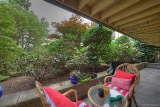 Photo 18: 116 3277 Quadra St in VICTORIA: SE Maplewood Condo for sale (Saanich East)  : MLS®# 768023