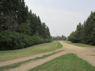 Photo 34: 24123 HWY 37: Rural Sturgeon County House for sale : MLS®# E4259044