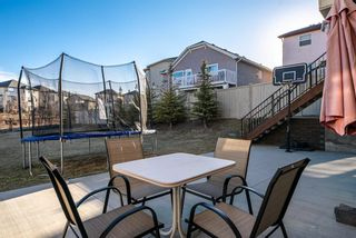 Photo 39: 21 Sherwood Way NW in Calgary: Sherwood Detached for sale : MLS®# A1100919