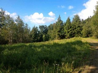 Photo 3: 41320 OLD YALE Road in Abbotsford: Sumas Prairie Land for sale : MLS®# R2574311
