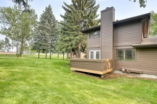 Photo 24: 42 336 Rundlehill Drive NE in Calgary: Rundle Row/Townhouse for sale : MLS®# A1101344