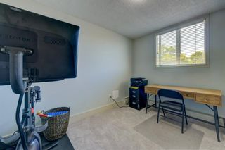 Photo 17: 308 505 19 Avenue SW in Calgary: Cliff Bungalow Apartment for sale : MLS®# A1126941