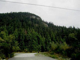 Photo 6: 4000 HIGHWAY 99 in Squamish: Garibaldi Highlands House for sale : MLS®# V1025412