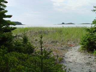 Photo 20: 0 Moshers Island Road in LaHave River: 405-Lunenburg County Vacant Land for sale (South Shore)  : MLS®# 202111805