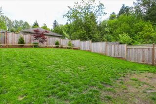 Photo 20: 10450 245 Street in Maple Ridge: Albion House for sale : MLS®# R2062622
