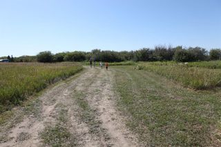 Photo 12: SE ¼ 30-19-28 W4M: Rural Foothills County Residential Land for sale : MLS®# A1069509