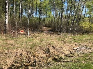 Photo 2: 46044 MB-11 Highway in Hadashville: Vacant Land for sale