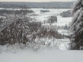 Photo 9: 728 CALLIS Road in Quesnel: Quesnel - Rural North House for sale (Quesnel (Zone 28))  : MLS®# N206825
