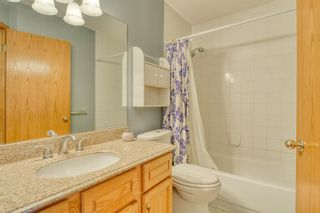 Photo 33: 355 HAMPSHIRE Court NW in Calgary: Hamptons Detached for sale : MLS®# A1053119