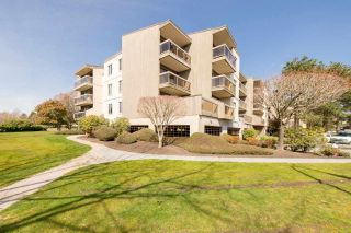 "Photo 12: 305 6655 LYNAS Lane in Richmond: Riverdale RI Condo for sale in ""Riverdale"" : MLS®# R2152834"
