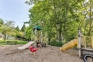 """Photo 31: 40 23560 119 Avenue in Maple Ridge: Cottonwood MR Townhouse for sale in """"HOLLYHOCK"""" : MLS®# R2600014"""