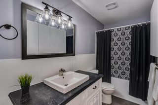 Photo 14: 644 RADCLIFFE Road SE in Calgary: Albert Park/Radisson Heights Detached for sale : MLS®# A1025632