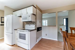 Photo 15: 8524 33 Avenue NW in Calgary: Bowness Detached for sale : MLS®# A1112879