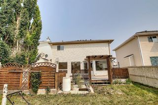 Photo 48: 766 Coral Springs Boulevard NE in Calgary: Coral Springs Detached for sale : MLS®# A1136272