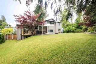 Photo 19: 3121 BABICH Street in Abbotsford: Central Abbotsford House for sale : MLS®# R2179569