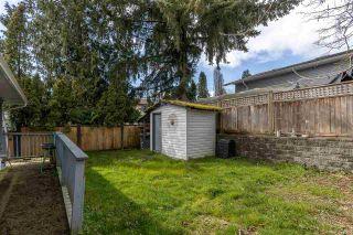 Photo 35: 12025 206B Street in Maple Ridge: Northwest Maple Ridge House for sale : MLS®# R2464942