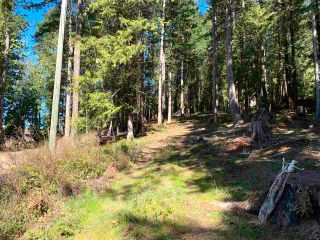 Photo 16: 413 CAMPBELL BAY Road: Mayne Island Land for sale (Islands-Van. & Gulf)  : MLS®# R2564883