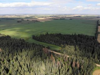 Photo 2: TWP 593 and RR 212: Rural Thorhild County Rural Land/Vacant Lot for sale : MLS®# E4259030