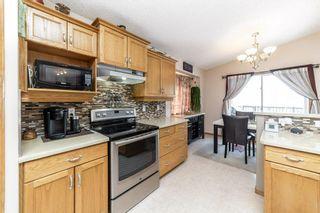 Photo 17: 69 Haviland Crescent: St. Albert House for sale : MLS®# E4227066