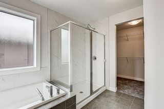 Photo 34: 216 Red Sky Terrace NE in Calgary: Redstone Detached for sale : MLS®# A1125516