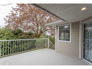Photo 20: 3090 GOLDFINCH Street in Abbotsford: Abbotsford West House for sale : MLS®# R2262126