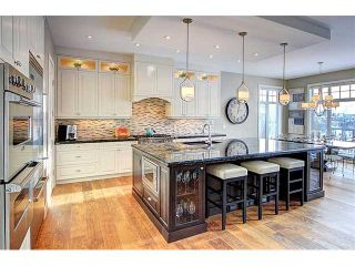 Photo 8: 162 CHAPALA Point SE in Calgary: Chaparral Residential Detached Single Family for sale : MLS®# C3648105