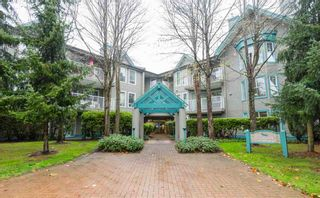Photo 1: 213 15150 108 ST in Surrey: Guildford Condo for sale (North Surrey)  : MLS®# F1445407