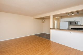 Photo 18: 97 230 EDWARDS Drive in Edmonton: Zone 53 Townhouse for sale : MLS®# E4262589