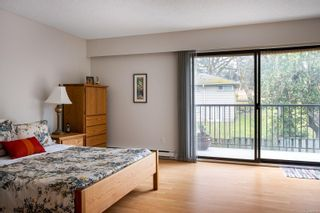 Photo 15: 4211 Lynnfield Cres in : SE Mt Doug House for sale (Saanich East)  : MLS®# 865959