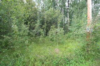 Photo 2: 65 15065 TWP RD 470: Rural Wetaskiwin County Rural Land/Vacant Lot for sale : MLS®# E4257316