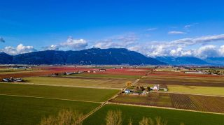 Photo 9: LT.2 TOLMIE ROAD in Abbotsford: Sumas Prairie Land for sale : MLS®# R2540016