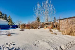 Photo 16: 4 Downie Close: Carstairs Detached for sale : MLS®# A1104304