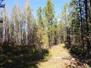 Photo 3: 2773 MEIER Road in Prince George: Cluculz Lake Land for sale (PG Rural West (Zone 77))  : MLS®# R2214176