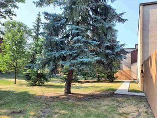 Photo 31: 7118 178 Street in Edmonton: Zone 20 Townhouse for sale : MLS®# E4253890
