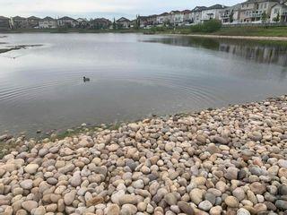 Photo 42: 414 6070 SCHONSEE Way in Edmonton: Zone 28 Condo for sale : MLS®# E4248308