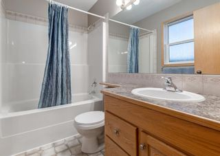 Photo 22: 103 DOHERTY Close: Red Deer Detached for sale : MLS®# A1147835